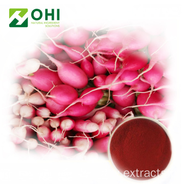 Red Radish Color Natural Red Pigment